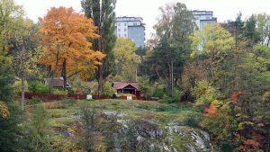 Schrebergärten in Stockholm
